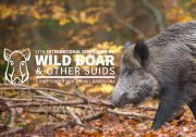 13th International Symposium on Wild Boar and Other Suids